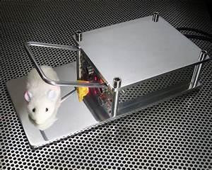 Piege à Rat Efficace : pi ge souris hi tech ubergizmo france ~ Dailycaller-alerts.com Idées de Décoration