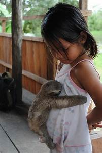Baby sloth hugs little girl - Teh Cute