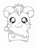 Rock Star Coloring Pages Hamtaro Printable Colouring Bulkcolor Sheets Barbie Band Template Zoo Doghousemusic Pokemon sketch template