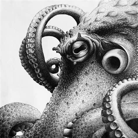 lilysky art drawings