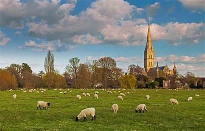 Virgin Mary Sheep Herd Salisbury Cathedral Saint