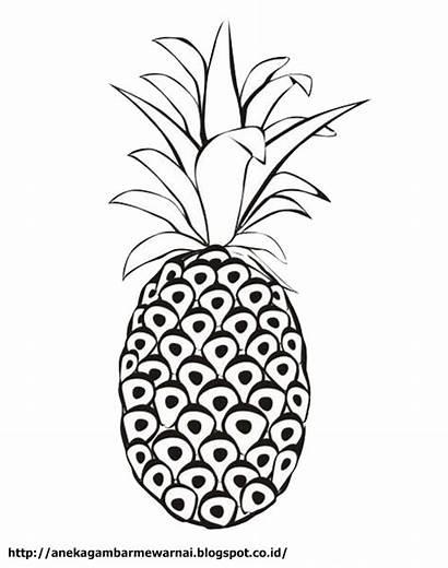 Buah Nanas Gambar Mewarnai Pineapple Coloring Untuk