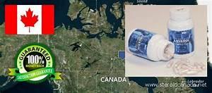 O U00f9 Acheter Des St U00e9ro U00efdes Anabolisants En Ligne Du Canada  Crazybulk Legal Steroids Review