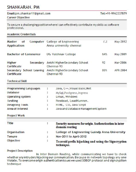 Professional Resume Format by Professional Resume Format For Freshers