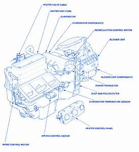 Honda Pilot 2003 Electrical Circuit Wiring Diagram  U00bb Carfusebox