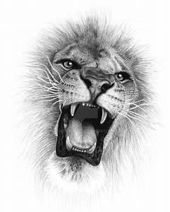 Lion Roar by jendawn77.deviantart.com on @DeviantArt | for ...