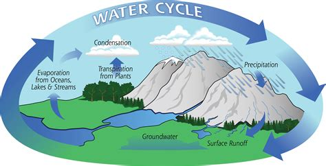 Diagram of the water cycle showing evaporation  condensation  and      Evaporation Diagram
