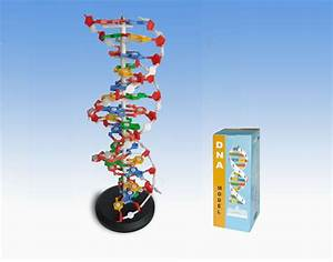 Unseen Rare Collection  Dna Structure Dna Synthesis Dna