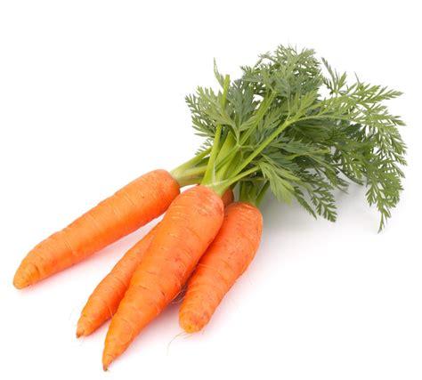 cuisiner des carottes nouvelles les bienfaits de la carotte pour la santé