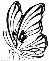 Butterfly Coloring Pages Butterflies Printable Drawing Colouring Monarch Cocoon Line Cool2bkids Getcolorings Getdrawings sketch template