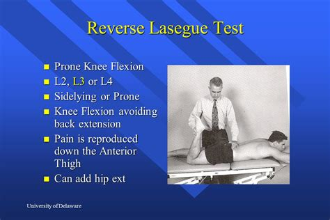 test lasegue special tests in the spine ppt