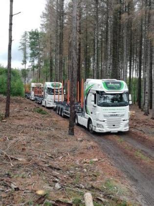 TRANS-WOOD   34-122 Wieprz   Koksnes / baļķu zāģēšana   Lentzāģis   Transports un kravas ...