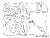 Inchworm Coloring Pages Template Letter sketch template