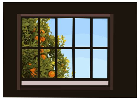 Images Of Windows Clipart Window With Orange Tree