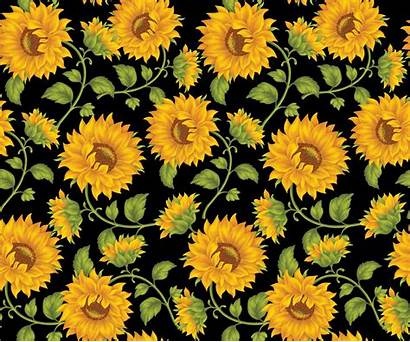 Aesthetic Yellow Computer Desktop Wallpapers Backgrounds Wallpaperaccess