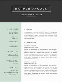 Professional Resumes with Color