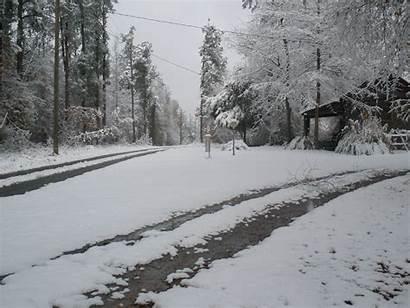 Snowfall Weather December 25th 27th Sc Lexington