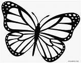 Butterfly Monarch Printable Coloring Pages Outline Simple Template Drawing Info sketch template