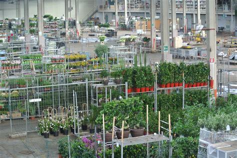 mercato dei fiori napoli mercato floricolo di ercolano un opportunit 224 importante
