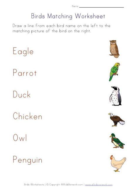 matching worksheet birds worksheets  kids