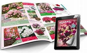 H M Katalog Online Blättern : g rtner starkl kataloge online ansehen ~ Eleganceandgraceweddings.com Haus und Dekorationen