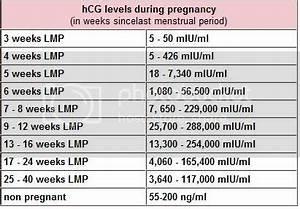 Hcg Chart Page 2 Babycenter