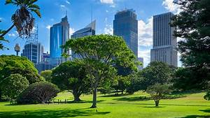 The top 10 amazing place to visit in sydney india tours for Sydney botanical gardens