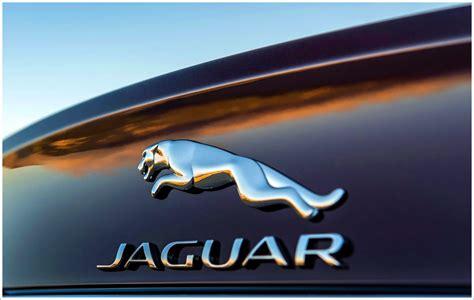 Jaguar Logo Meaning And History [jaguar Symbol]