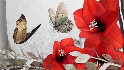 Flower Butterfly Floral Wallpapers Flowers Desktop Wiki