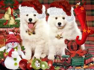 Cute Christmas Puppies Screensaver