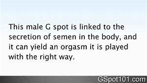 Difference Between The Male G Spot And Female G Spot