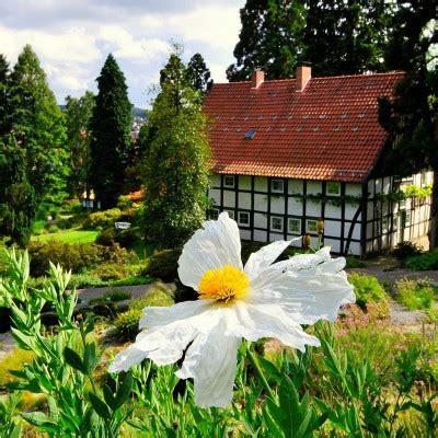 Freunde Botanischer Garten Bielefeld by Woche Der Botanischen G 228 Rten 171 Verein Freunde Des