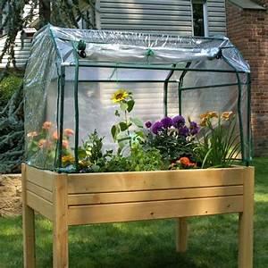 Serre Pour Plante : serre de jardin la maison id ale pour vos plantes en hiver ~ Premium-room.com Idées de Décoration