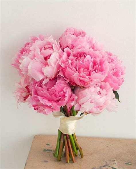ideas  pink bouquet  pinterest pale pink