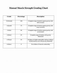 Manual Muscle Testing Chart Printable