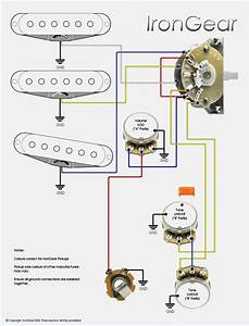 Strat Wiring Diagrams  Wiring Diagram For A Smith Strat