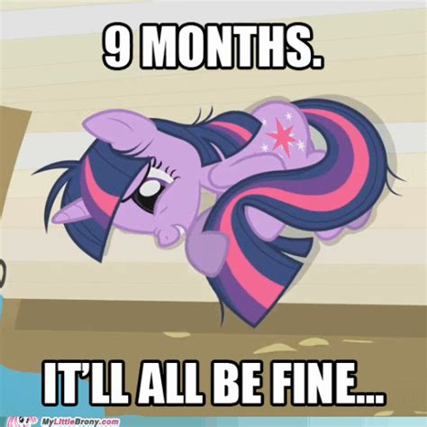 Meme My Little Pony - twilight sparkle funny memes