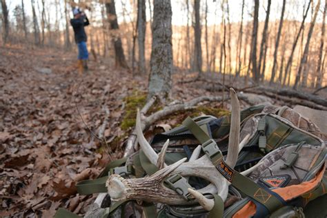 when and where to look for shed antlers head hunters tv