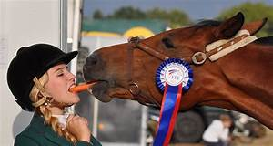 11 Disgusting  U0026 Funny Things Horse Owners Do  We Really Do