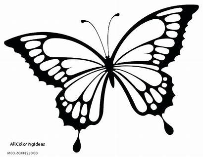 Butterfly Coloring Pages Drawing Monarch Butterflies Printable
