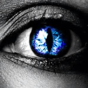 cat eye contact lenses i found blue cat eye contacts on wish check it out