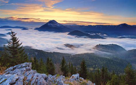 Landscape, Nature, Mountain, Snowy Peak, Forest, Mist