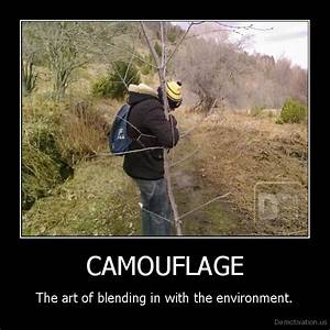 CAMOUFLAGEThe art of blending in with the environment.De ...