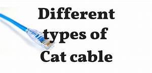 Difference Between Cat5 Vs Cat5e Vs Cat6 Vs Cat6a Vs Cat7