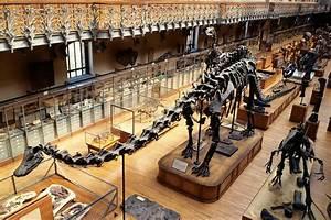 Musée Soulages Horaires : museum d 39 histoire naturelle de paris ce qu 39 il ne faut ~ Melissatoandfro.com Idées de Décoration