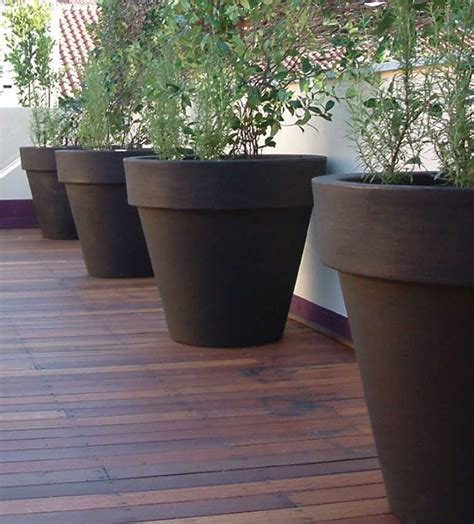 outdoor large plant pots planting trees in large flower pots front yard landscaping ideas