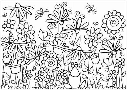 Coloring Flowers Pages Flower Adults Frog Vegetation