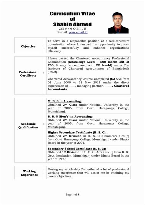 Resume Sle Word by 7 Best Resume Inspiration Images On Resume