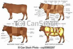 Beef Chart Cuts Of Beef Beef Cuts Diagram Beef Meat