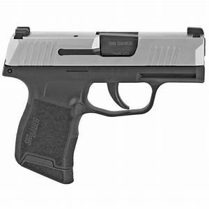Sig Sauer P365 Stainless Steel 9mm  U00b7 365